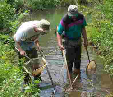 Scientists explore a stream